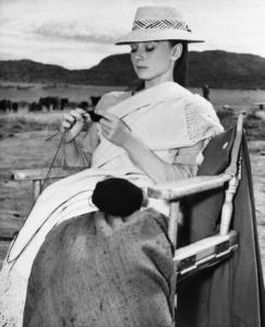 Audrey Hepburn lavora a maglia sul set de Gli Inesorabili