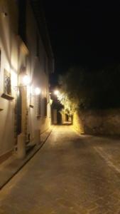 Firenze- Via di San Leonardo - MaMaglia