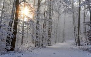 Cos'è l'armocromia - Inverno By MaMaglia Creazioni Artigianali