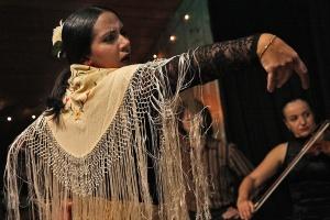 Flamenco - Recensione MaMaglia (3)