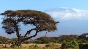 La ragazza del sole - Kenia